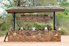 Stationnement national est de Tsavo Photo libre de droits