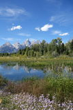 Stationnement national grand de Teton Photographie stock libre de droits