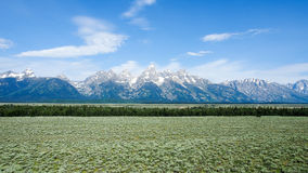 Stationnement national grand de Teton Photographie stock