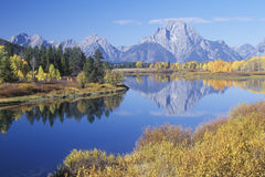 Stationnement national grand de Teton en automne, Photographie stock