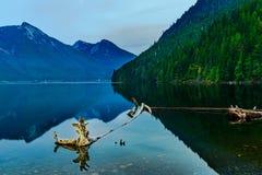 Stationnement provincial de lac Chilliwack Images libres de droits