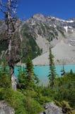 Stationnement provincial de lacs Joffre Photo stock