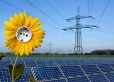 Stationnement solaire, tournesol avec le plot et ligne électrique Photo libre de droits