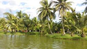 Stationnement tropical Image libre de droits