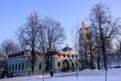 Stationnement Tsaritsyno de Moscou en hiver Photographie stock libre de droits