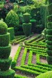 Stationnement vert décoratif - jardin botanique Funchal photographie stock