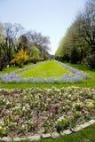 Stationnements de Bucarest et jardins - Cismigiu Photographie stock libre de droits