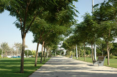 Stationnements de Dubaï Image libre de droits