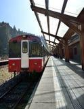 Stationsplattform Alishan Forest Railway Stockfotografie