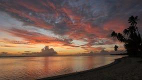 Statisch zeer wijd geschoten van een strand bij zonsondergang in rarotonga de Cook Eilanden stock footage