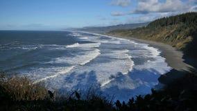 Statisch zeer wijd geschoten van het strand in patricks richt het park van de staat Californië stock video