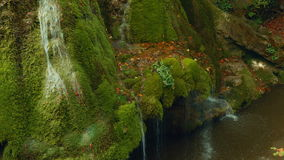 Statischer mittlerer Schuss des einzigartigen Bigar-Wasserfalls in Rumänien stock video footage