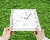 Statistics doodles with clock hands on tablet. Green leaves background Stock Photography