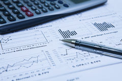 Statistics Income Statement Royalty Free Stock Image