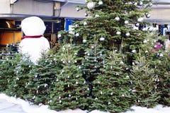 Stativ av jultrees vid snowmanen Royaltyfri Fotografi