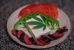 statki szklanych kolację soku warzywa Obraz Royalty Free