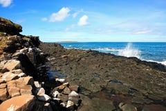 Stato Brasile della Bahia delle isole di Abrolhos Fotografia Stock