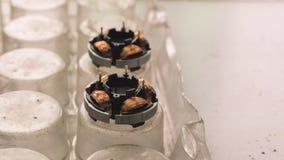 Stator met winding in een fabriek van kleine ventilators royalty-vrije stock afbeeldingen