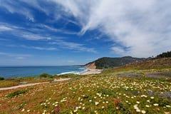 Statrutt 1 (Stillahavskustenhuvudvägen), närliggande Monterey Kalifornien, USA för Stilla havet - Kalifornien royaltyfria foton