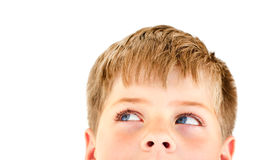 Stattlicher blonder Junge, der die Ecke untersucht. Lizenzfreie Stockbilder