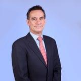 Stattlicher lächelnder Geschäftsmann in der Klage auf Blau stockbilder