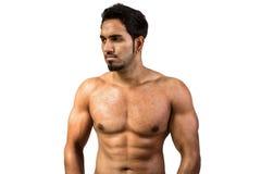 Stattlicher Mann, der seine Muskeln zeigt Stockfotografie