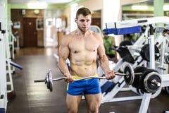 Stattlicher muskulöser Kerl Stockbild
