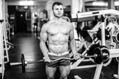Stattlicher muskulöser Kerl Lizenzfreies Stockbild
