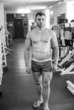 Stattlicher muskulöser Kerl Stockfotos