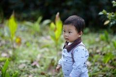 Stattliches Baby lizenzfreie stockfotos