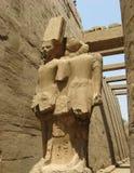 Statua bóstwa Amun akademie królewskie, Luxor Zdjęcie Royalty Free