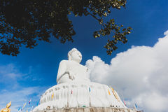Statua bianca di Buddha con cielo blu ed albero su fondo Fotografie Stock