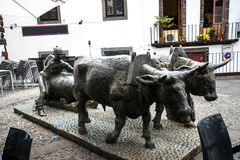 Statua bronzea dei buoi ed il loro driver che tira le merci sui corridori di legno La statua è a Funchal Madera vicino al mercato immagine stock