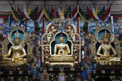 Statua Buddha w Złotym kolorze z dwa innymi statuami w Monastry przy Coorg zdjęcie stock