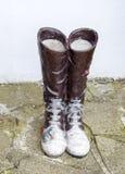 statua buty z koronkami Żaba i biedronka siedzimy na butach zdjęcie stock