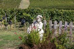 Statua ch?opiec trzyma kosz z winogronami na tle winnicy w Saint Emilion regionie fotografia royalty free