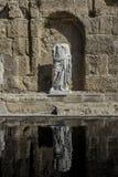 Statua con la riflessione Fotografia Stock Libera da Diritti