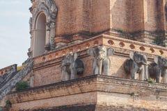 Statua degli elefanti dello stupa di Chedi Luang, tempio di Chedi Luang immagini stock