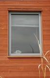 Statua dei pesci in finestra Fotografia Stock