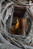 Statua del Buddha in chiesa antica Fotografie Stock