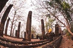 Statua del Buddha nella sosta storica di Sukhothai Fotografia Stock
