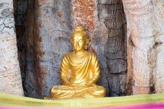 Statua del Buddha in tempiale tailandese Immagini Stock Libere da Diritti