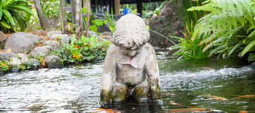 Statua del cherubino nello stagno Immagini Stock Libere da Diritti