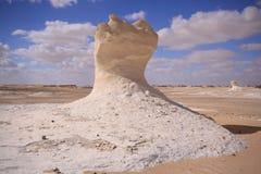 Statua del deserto di Whitte fotografia stock libera da diritti