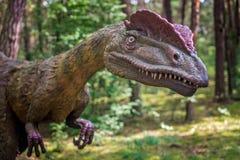 Statua del dinosauro di allosauro Immagine Stock Libera da Diritti