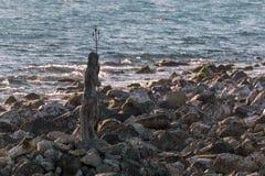 Statua del dio Nettuno su una scogliera fotografie stock libere da diritti