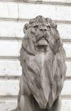 Statua del leone, Budapest Fotografia Stock Libera da Diritti