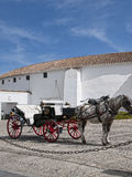 Statua del toro dall'arena in Ronda Andalucia Spain Immagine Stock