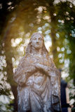 Statua del Virgin Mary Fotografie Stock Libere da Diritti