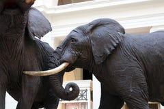 Statua dell'elefante al museo di scienza Fotografia Stock Libera da Diritti